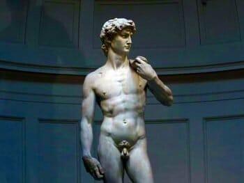 La Galleria dell'Accademia di Firenze è uno dei musei statali più importanti del nostro parimonio culturale. Al suo interno è custodito il David di Michelangelo, la scultura fra le più note ed importanti al mondo, simbolo universale della città di Firenze.